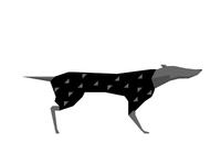 WIP Greyhound