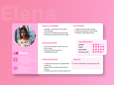 User Persona for an Online Veterinary design ux