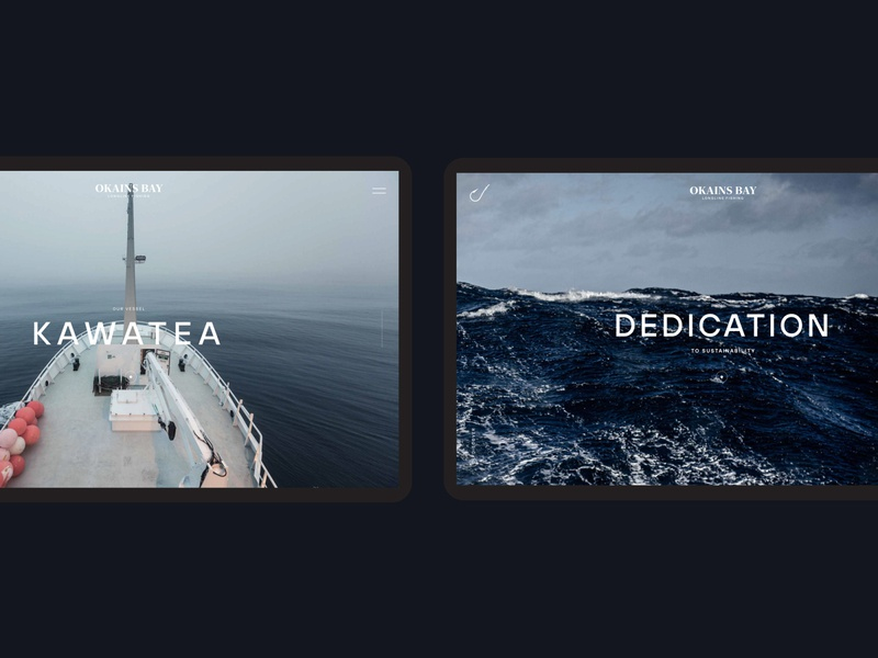 Okains Bay interaction interaction design brand and identity design ux design ux ui
