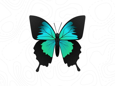 Butterfly bugs creatures fun affinity designer butterfly pattern illustration