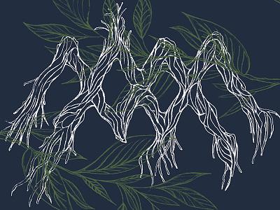 Album Art album art nature leaves roots trees botanical illustration