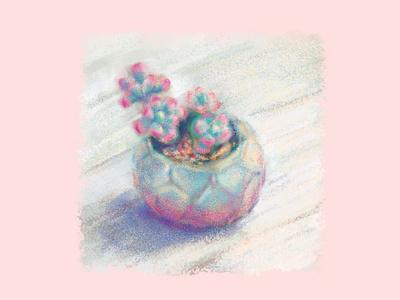pink summer days illustration