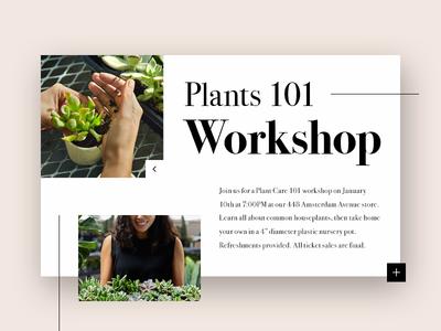 Plants Workshop - Information Card