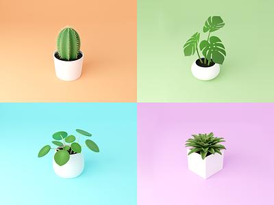 Day 51-55 Houseplants succulent pilea monstera cactus series houseplant plants blendercycles blender 100daysof3dbytx 100daysof3d 3d the100dayproject