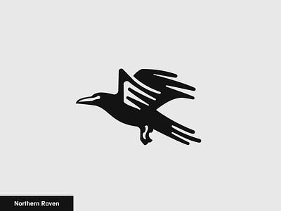 Northern Raven   2/24 mark simple wing black logo icon animal bird raven northern raven
