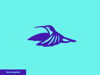 Hummingbird  4/24 logo icon nature
