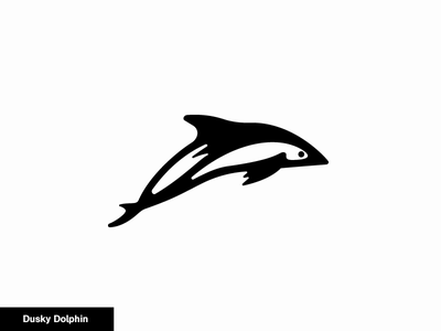 Dusky Dolphin 21/24 icon logo animal dolphin dusky
