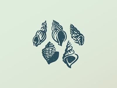 Shells branding icon logo drawing nature sea shell