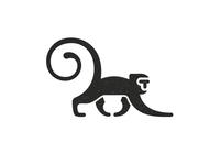 T Monkey 1
