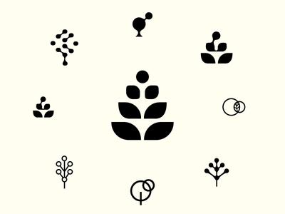 Molecule  Plants icon nature bio geometry shape logo chemistry tree plant molecule