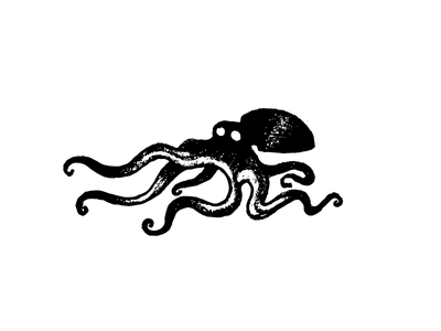 Octopus deep sea tentacle logo illustration sketch creature octopus