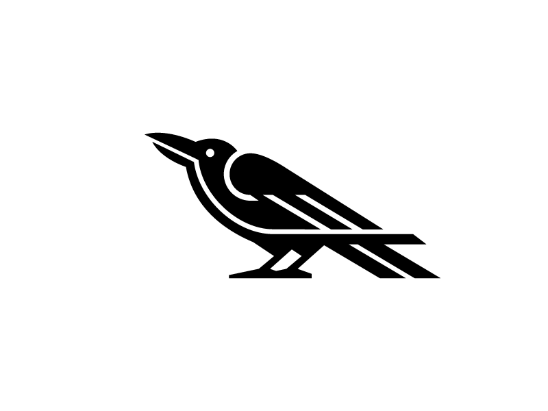 Crow logo illustration animal night bird crow