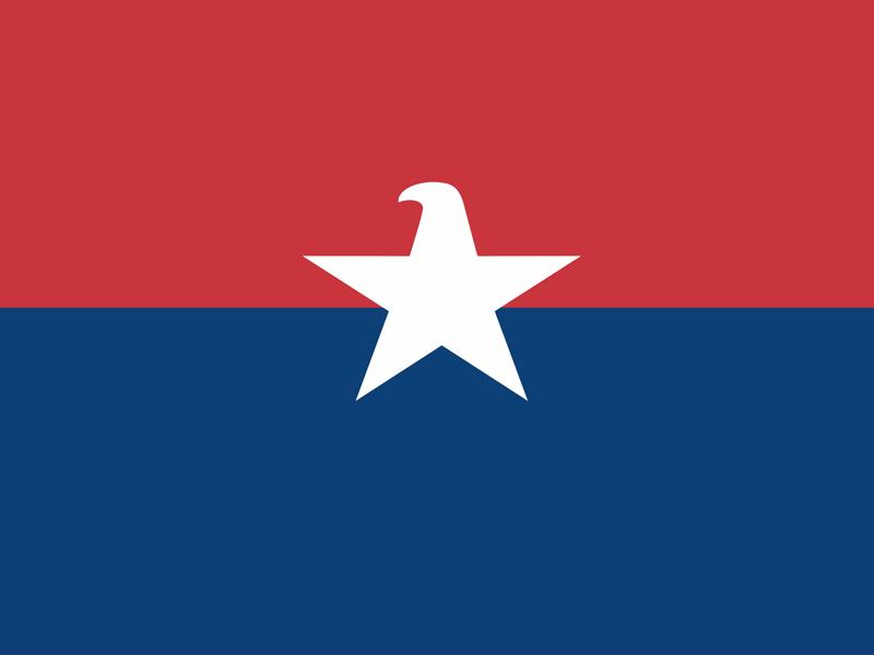 Eagle American Star army avio america eagle american logo logo design branding brand symbol communication agency pavel surovy logo designer