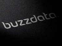 Buzzdata 2nd proposal