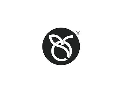 logo design trip tourism iranian iran persian orange bergamot orange bergamot orange icon fruit branding logo