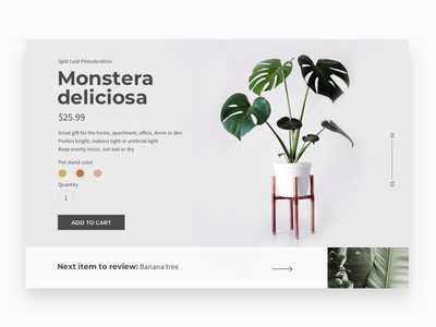 Daily UI #033 - Customize Product daily ui 033 nature web page ui daily ui challenge daily ui challenge dailyui card single product color picker add to cart product page product customize product customize pot cactus plant monstera