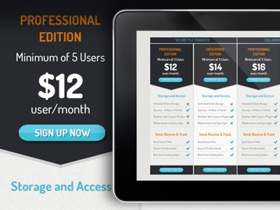 Pricing Table design ui web blue grey buttons sign up pricing pricing table website
