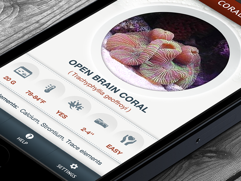 Coral Reference Guide - iPhone App by Anke Mackenthun | Dribbble