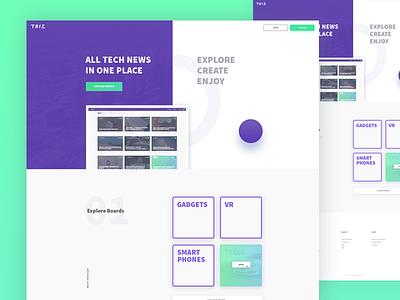 TRIZ - main page typography landing web ux ui website page flat split layout