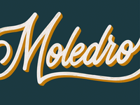 The 100 Day Project: Moledro