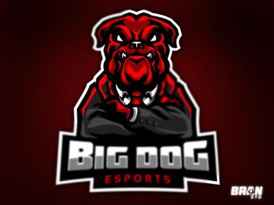 BIG DOG Esports