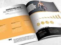 Textiss - Marketing study