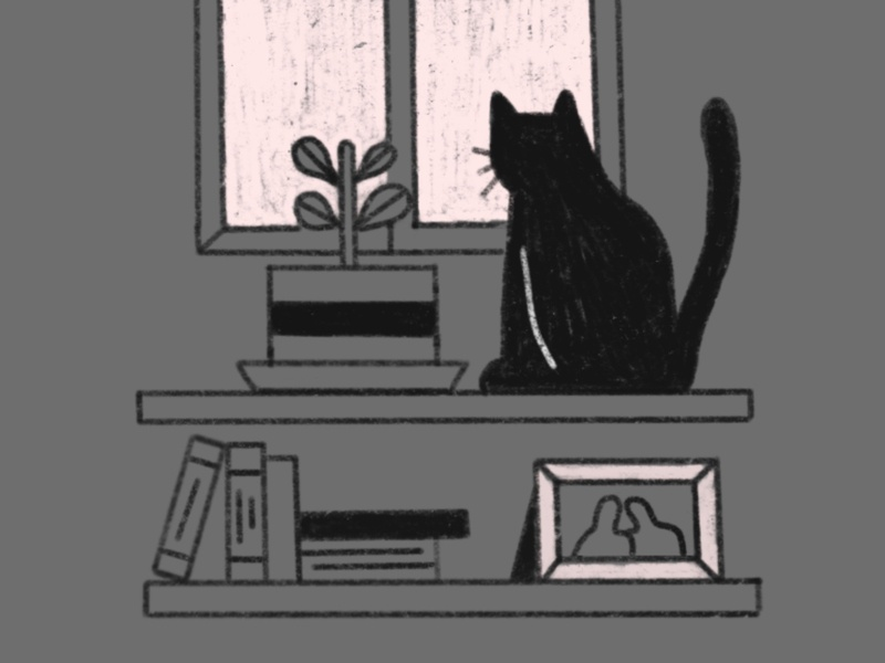 Cat pencilsketch rainyday moody plant pet cat