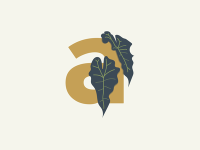 A Is For Alocasia