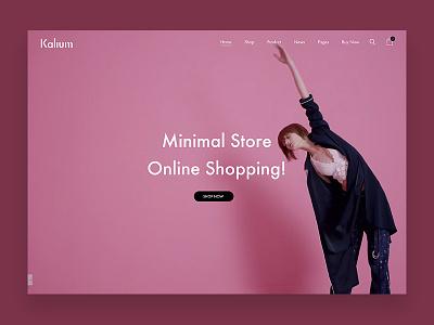 Fashion Shopping Site minimal web design templates themes wp theme wordpress fashion website