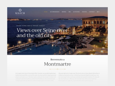 Hotel Site airbnb booking theme template web web design webdesign hotels themes wordpress hotel