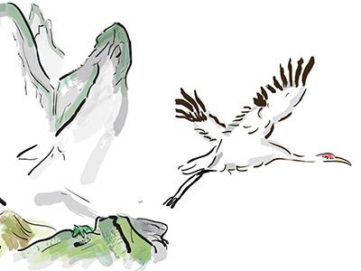 Crane - book illustration illustration chinese painting wip