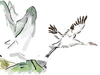 Crane - book illustration