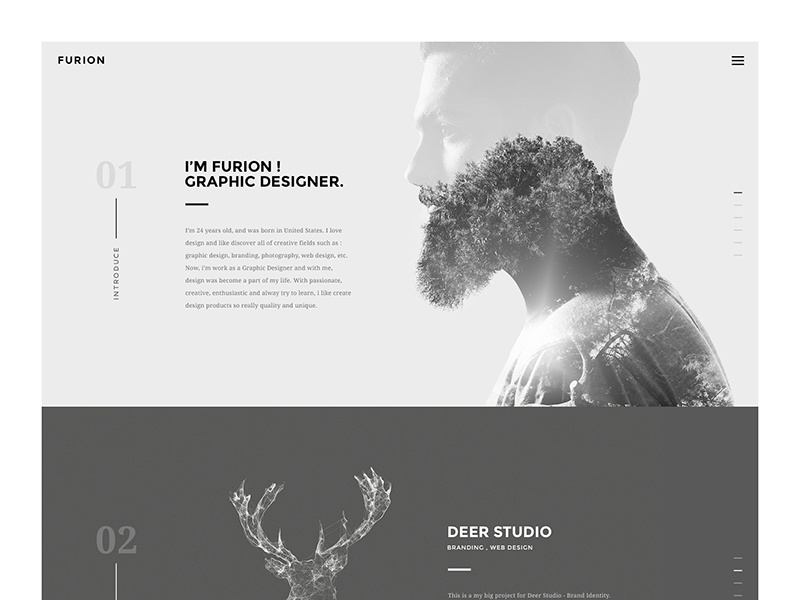 Furion - Freelancer Portfolio  theme wordpress homepage simple portfolio freelancer web minimal creative site