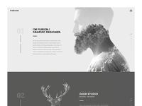Furion - Freelancer Portfolio