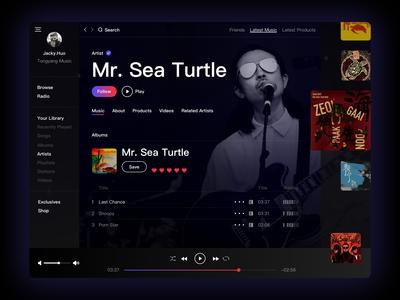 Mr  Sea Turtle