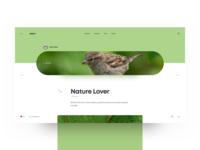 Soium Blog Details Page - Green