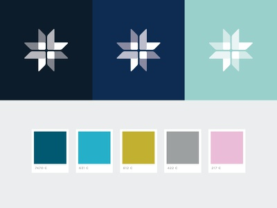 St. Mary's Academy color palette cross brand branding academy eduction girls vector graphic design design color palette color logo