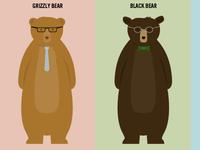 Bear Identification