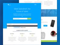 Salesbrief Landing Page