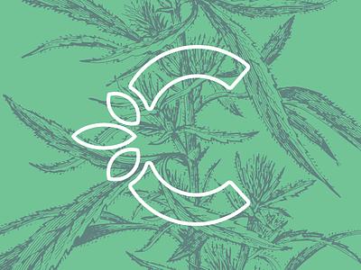 Branding legalization and regulation of Cannabis legalization legalize branding botanical leaves green marihuana cannabis