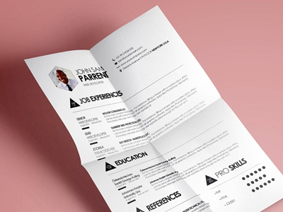 Free Clean Resume / cv