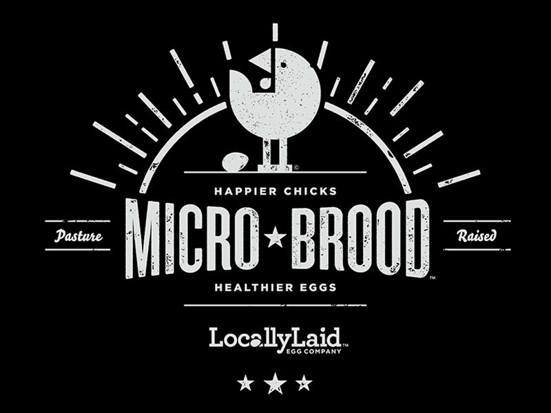 Micro-Brood Chicken Shirt locally laid shirt microbrood wordplay pasture raised texture