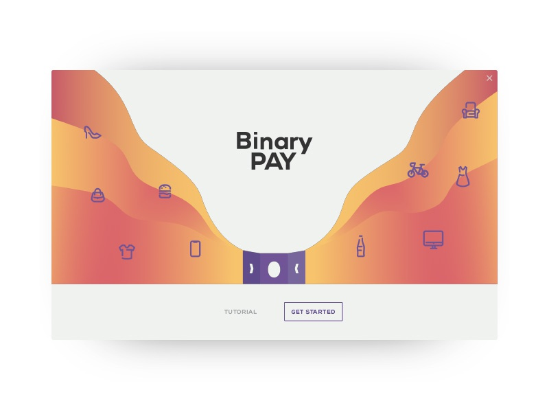 BinaryPay Welcome binarypay payment system ui