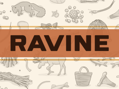 Ravine - A Crafty & Cooperative Card Game