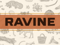 Ravine - A Crafty & Cooperative Card Game