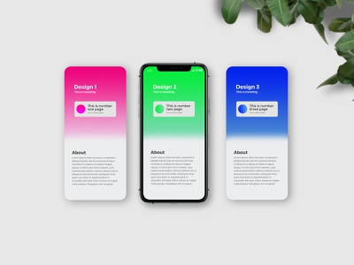iPhone 11 Pro App Presentation Mockup ios display screen leaves natural modern clean photo realistic 3 page professional psd mokcup presentation design web ux ui app iphone 11 iphone 11 pro