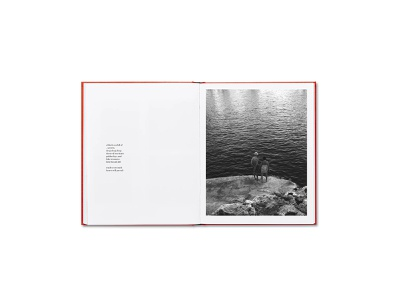 Sea Secrets publishing book design photo book web design visual art typogaphy editorial photography