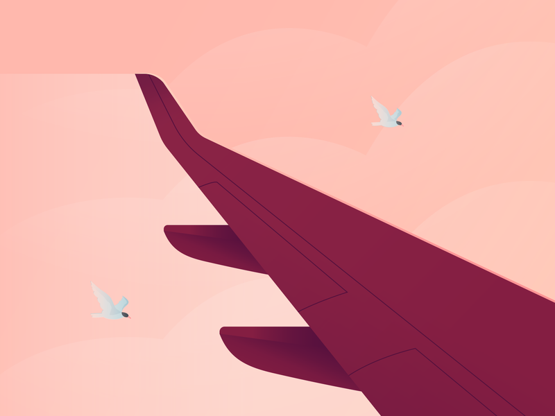 Course Illustration vector design flat illustration wings planes plane sight ambient businesswoman business flying clouds sky birds wing plane wing plane