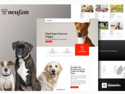 Neufam wordpress design designs designer webdesigner webdesign web ux website ui design