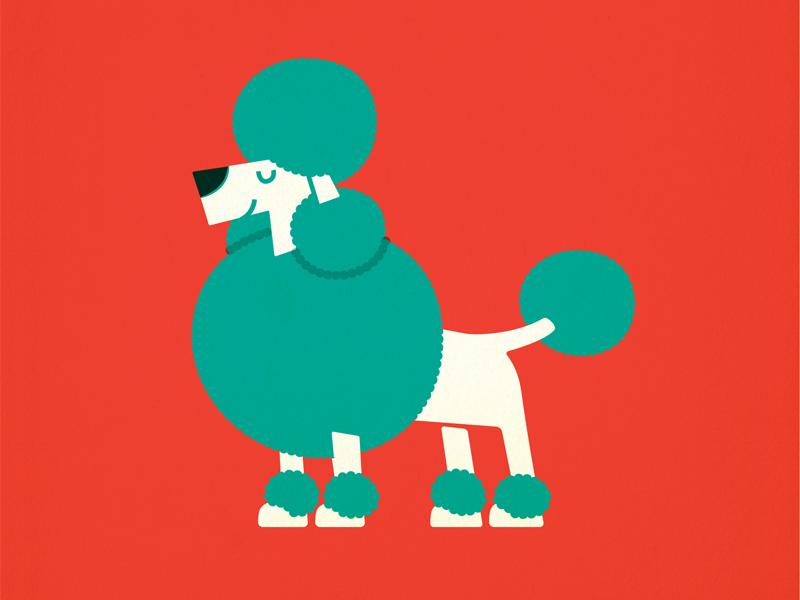 Poodle dog puppy pet retro vintage children kids illustration canine vector